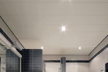 Badkamer Plafond Oplossingen : Plafonds sanixl